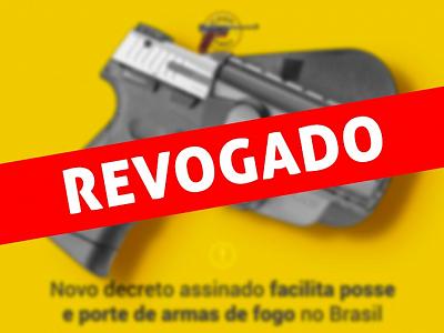 Decreto assinado facilita posse e porte de armas de fogo no Brasil - 2019